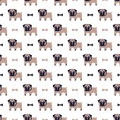 picture of rabies  - Seamless pattern with pug and bone vector background - JPG