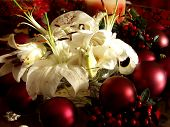 picture of christmas flower  - Christmas flowers surrounded by red ornaments - JPG