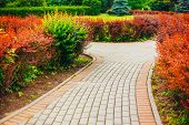 stock photo of landscapes beautiful  - Stone Pathway Walkway Lane Path With Green Trees And Bushes In Garden - JPG