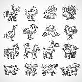 image of donkey  - Farm animals sketch set with hog donkey cow goat isolated vector illustration - JPG