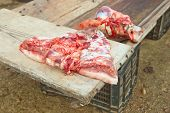 image of trough  - Pieces of pig over wooden trough. Traditional home slaughtering in a rural area Extremadura Spain
