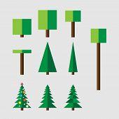 foto of eucalyptus trees  - Set of vector trees - JPG