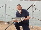 pic of specimens  - A fisherman with his rod caught specimen seabass of 9lb 11oz - JPG