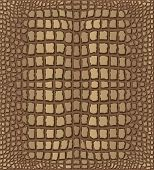 pic of lizard skin  - Light Brown Crocodile Skin Texture  - JPG