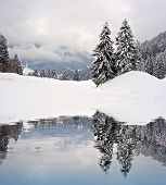 picture of winter landscape  - Beautiful winter landscape in the Swiss Alps with pinetrees covered with snow reflected on a water surface - JPG