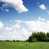 picture of sun rays  - Green field - JPG