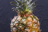 Fresh Green Pineapple Close Up. Hawaiian Ananas On Black Background. Tasty Tropical Fruit. poster