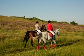 Horseback Riders. Two Attractive Women Ride Horses On A Green Meadow. Horse Riding. Horse Racing. Ri poster