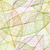 Leaf Background Soft Coloured Pattern In Vector