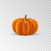 Pumpkin Realistic Icon. Orange Pumpkin Isolated. Vector Illustration poster