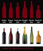 Set of vector french wine bottles with different forms