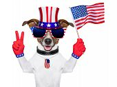 image of uncle  - american dog with peace fingers waving american flag - JPG