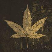 pic of reggae  - Cannabis leaf grunge icon - JPG