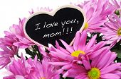 sentence I love you, mom written with chalk on a heart-shaped blackboard on a bouquet of pink chrysa