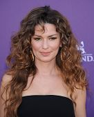LAS VEGAS - APR 07:  Shania Twain arrives to the Academy of Country Music Awards 2013  on April 07,