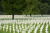 stock photo of rest-in-peace  - White crosses filling the fresh green lawn at Henri - JPG