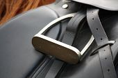 stock photo of girth  - Close up of black leather saddle on horse back - JPG