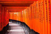image of inari  - Fushimi Inari Taisha Shrine in Kyoto Japan  - JPG