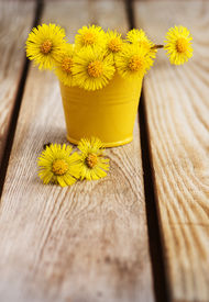 foto of stepmother  - Bouquet of flowers mother and stepmother on a wooden table - JPG