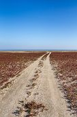 foto of steppes  - The steppe road to the sea - JPG