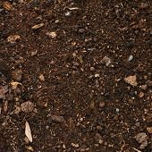 image of fragmentation  - Earth ground covered with compost mulch fragment as a texture background - JPG