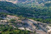 foto of habilis  - Olduvai Gorge is a cradle of mankind Tanzania Africa - JPG