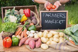 stock photo of farmer  - Farmer selling organic veg at market on a sunny day - JPG