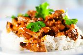 picture of cilantro  - Pork curry with rice and cilantro shot from below - JPG
