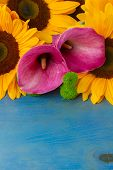 picture of calla  - bouquet of   sunflowers callas and mums ob blue background - JPG