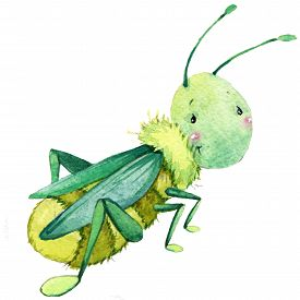 picture of caterpillar cartoon  - Cartoon cute insect watercolor illustration for kid education - JPG