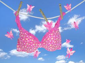 foto of clotheslines  - Floral pink bra hanging on a clothesline with breast cancer awareness pink ribbon butterflies in summer sky - JPG