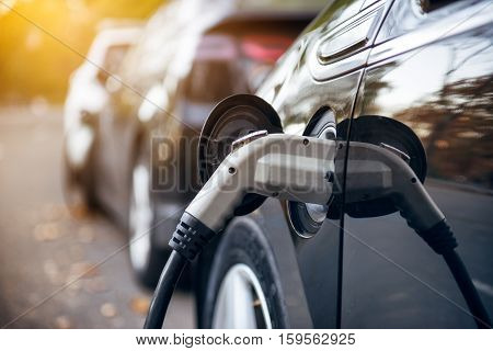 poster of Electric car charging on parking lot with electric car charging station on city street. Electric cars in the row ready for charge. Close up of the power supply plugged into an electric car being charged.