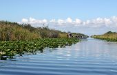 stock photo of airboat  - Airboat on tropical wetland in Everglades National Park in Florida - JPG