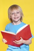 picture of red hair  - Portrait of the nice schoolboy on a yellow background - JPG