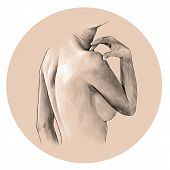 Female Body Arms Shoulders Shoulder Blades And Back Body Part, Sketch Vector Graphic Monochrome Illu poster