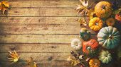 Thanksgiving pumpkins with fruits and falling leaves on rustic wooden table poster