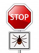 image of ixodes  - vector Ixodes ricinus tick road stop sign - JPG