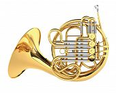 Double French Horn isolated