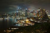picture of cbd  - Night skyline of Sydney - JPG