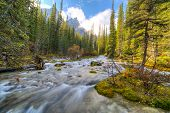 picture of ten  - River near Moraine lake in Banff National Park Canada Valley of the Ten Peaks - JPG