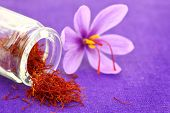 image of saffron  - Close up of saffron flower and dried saffron spice  - JPG