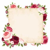 stock photo of english rose  - Vector beige card with red and pink roses - JPG