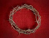 foto of crown-of-thorns  - Crown of thorns on red background cloth - JPG