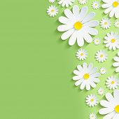 image of chamomile  - Beautiful spring nature background with 3d flower chamomiles - JPG