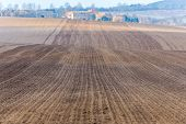 picture of plowing  - Large field ready for sowing and plowing action in the spring season - JPG