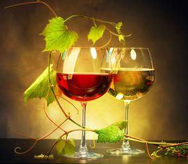 foto of grape  - Wine - JPG