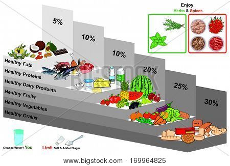 Vector Healthy Food Pyramid Infographic Chart Nutrition Balance And