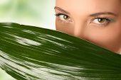 Постер, плакат: крупным планом глаза и зеленые листья