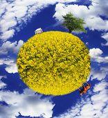 Постер, плакат: Сохраните композиция изображения планеты с земли и сельских ландшафтов с домашними животными