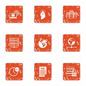 Whole Day Icons Set. Grunge Set Of 9 Whole Day Icons For Web Isolated On White Background poster